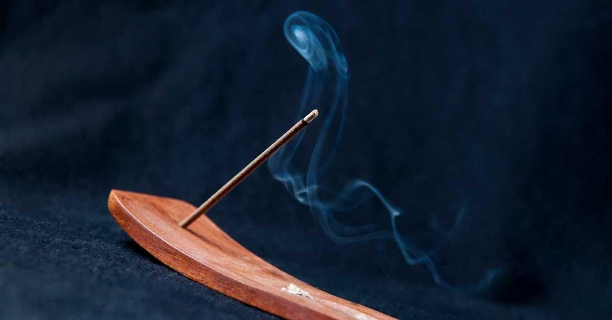 dog ate incense