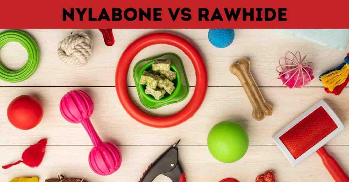 nylabone vs rawhide