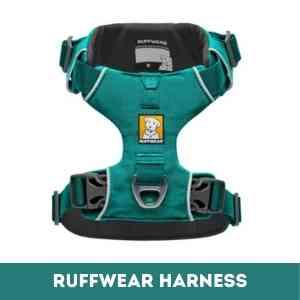 ruffwear vs kurgo